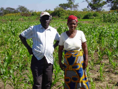 zambia mr & mrs masumba